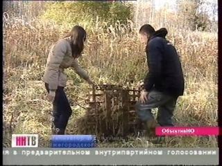 devki-realno-drochat-i-konchayutsya